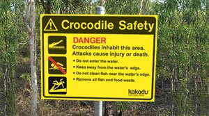 Night crocodile spotting in Kakadu
