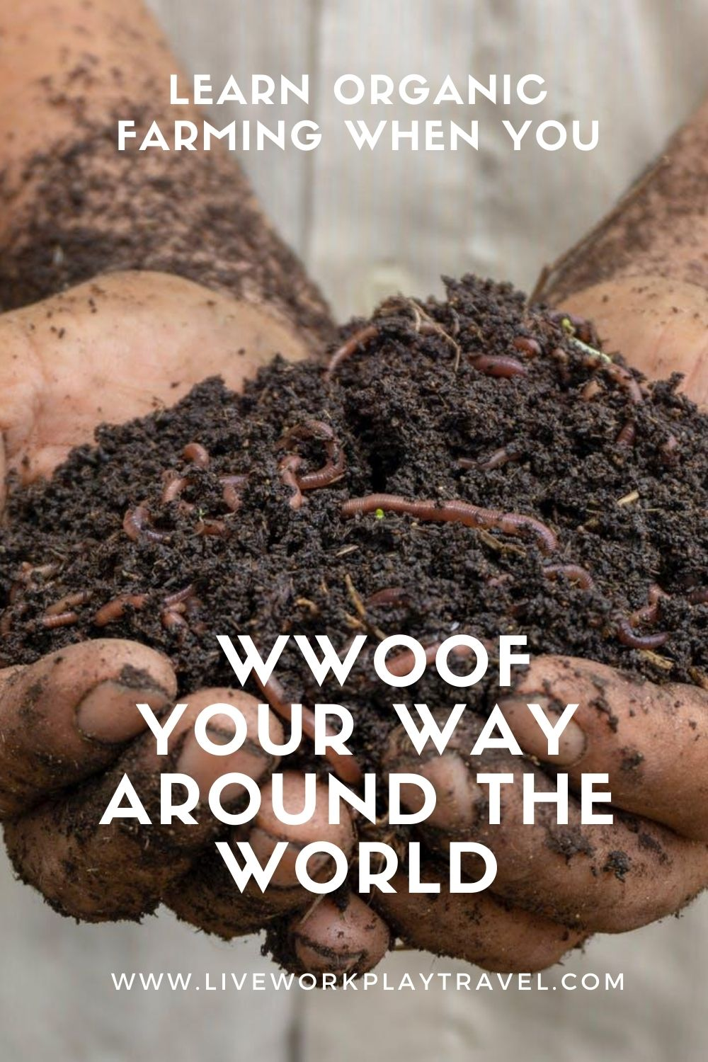 Pinterest Pin Man With Hands Together Full Of Dirt And Worms