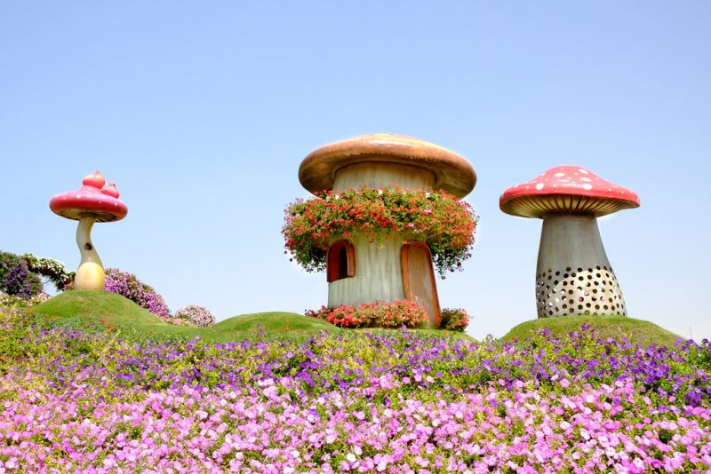 Mushroom Shaped Buildings At The Miracle Garden In Dubai.