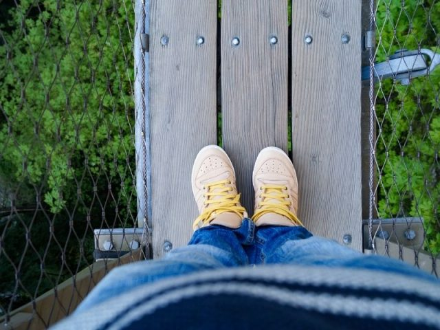 Standing On Capilano Suspension Bridge Outside Vancouver In Canada. It Is A Long Way Down.